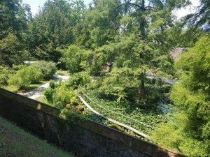 Lucca botanical gardens